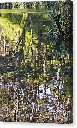 Canvas Print featuring the photograph Lakeshore Reflections by Kate Brown
