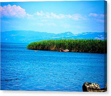 Lakeview Canvas Print by Zafer Gurel
