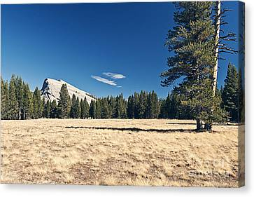 Lambert Dome In Yosemite National Park Canvas Print by Justin Paget
