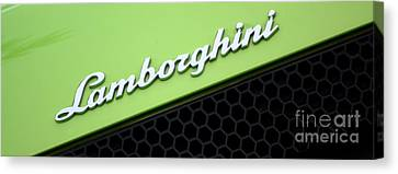 Lambologo8665 Canvas Print by Gary Gingrich Galleries