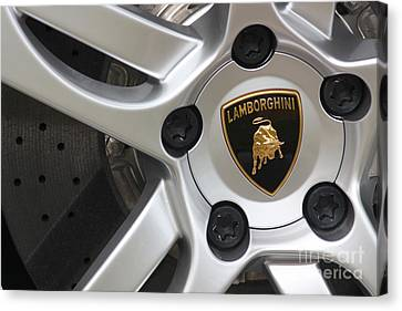 Lambowheel8679 Canvas Print by Gary Gingrich Galleries