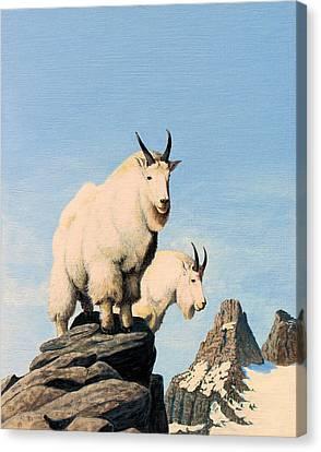 Lamoille Goats Canvas Print