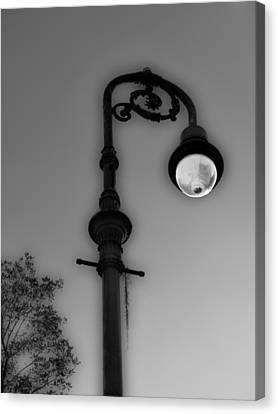 Canvas Print featuring the photograph Savannah Lamp Post by Frank Bright