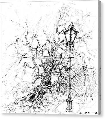 Lamp Post Canvas Print - Lamp Post And Tree by Kurt Tessmann