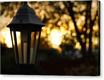 Canvas Print featuring the photograph Lamplight by Photographic Arts And Design Studio