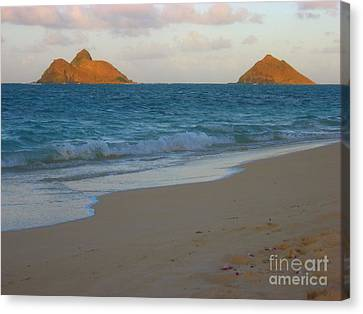 Lanakai Sunrise Canvas Print by Christine Stack