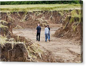 Land Eroded By Flooding Canvas Print