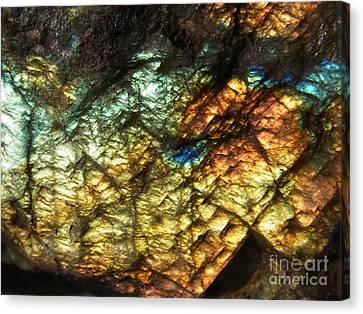 Land Of Light Canvas Print by Agnieszka Ledwon
