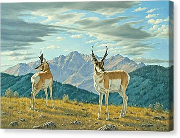 Land Of The Free Canvas Print by Paul Krapf
