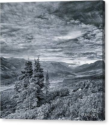 Land Shapes 18 Canvas Print