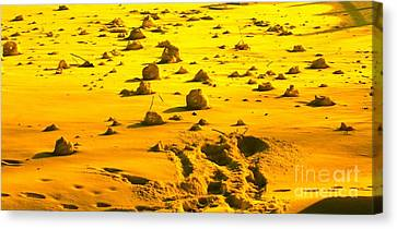 Landing On Mars 2 Canvas Print by Michael Grubb
