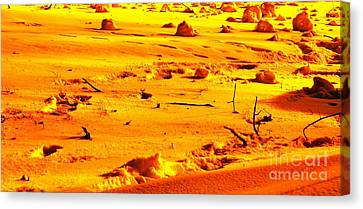 Landing On Mars Canvas Print by Michael Grubb