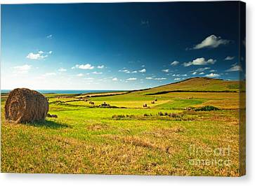 Canvas Print featuring the photograph Landscape At Summer by Boon Mee