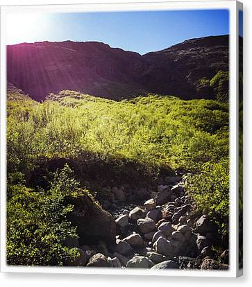 Landscape In Iceland Laugarvatn Canvas Print