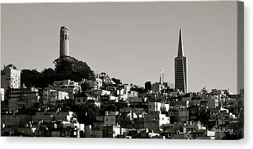 Landscape Of San Francisco Canvas Print by Alex King