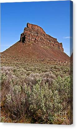Landscape Sagebrush And High Rocky Mountain Bluff Art Prints Canvas Print by Valerie Garner