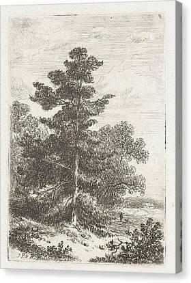 Landscape With A Fir, Print Maker Johannes Pieter Van Canvas Print