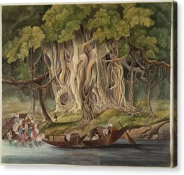 Landscape With Banyan Tree Canvas Print