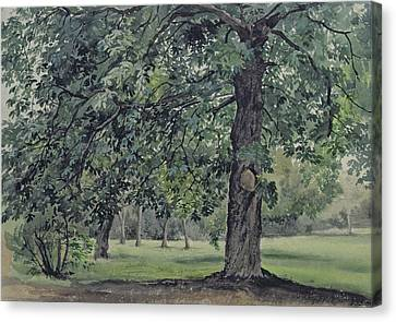 Collier Canvas Print - Landscape With Chestnut Tree In The Foreground by Thomas Collier