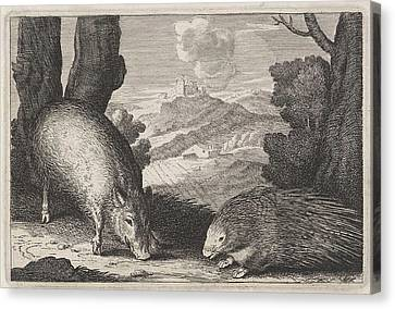 Landscape With Wild Boar And Porcupine, Anonymous Canvas Print
