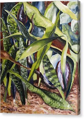 Languid Cactii Canvas Print