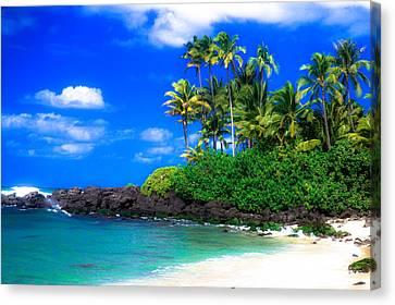 Laniakea Beach Oahu Canvas Print