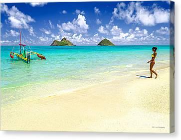 Lanikai Beach Paradise Canvas Print by Aloha Art