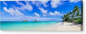 Lanikai Beach Tranquility 3 To 1 Aspect Ratio Canvas Print by Aloha Art