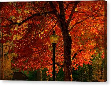 Lantern In Autumn Canvas Print