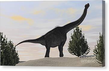 Large Brachiosaurus Amongst Pine Trees Canvas Print