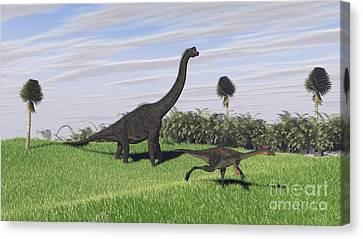 Large Brachiosaurus And A Gigantoraptor Canvas Print