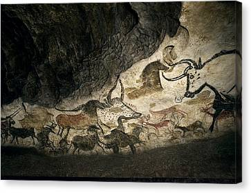 Display Canvas Print - Lascaux II Cave Painting Replica by Science Photo Library