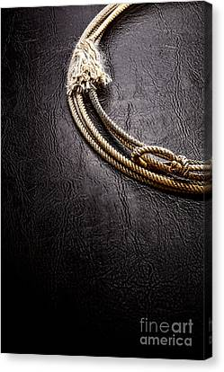 Lasso On Leather Canvas Print by Olivier Le Queinec
