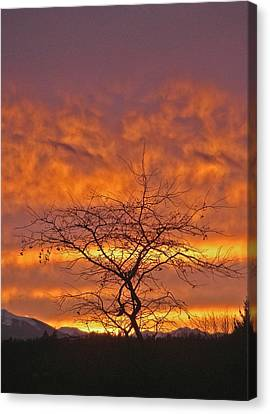 Canvas Print featuring the photograph Last Dance by Laurie Stewart