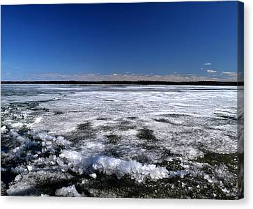 Last Day Of Ice On The Lake 3 Canvas Print by Lyle Crump