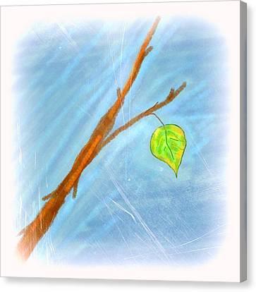 Foggy Day Digital Art Canvas Print - Last Leaf by Chandana Arts