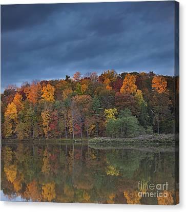 Last Light On Beebe Lake Canvas Print by Michele Steffey