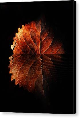 Autumn Leaf On Water Canvas Print - Last Light On Water by Terril Heilman