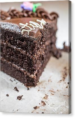 Last Piece Of Chocolate Cake Canvas Print by Edward Fielding