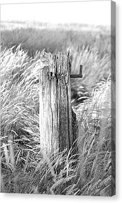 Gatepost Canvas Print - Last Post by David Davies