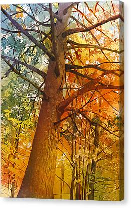 White Pines Canvas Print - Last Stand by Kris Parins