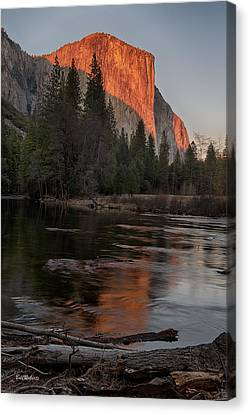 Last Sun On El Capitan Canvas Print by Bill Roberts