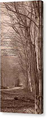 Last Walk Canvas Print by BandC  Photography