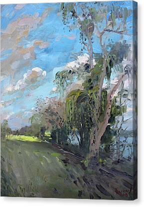 Late Afternoon By Niagara River Canvas Print by Ylli Haruni