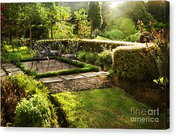 Late Afternoon Garden Canvas Print