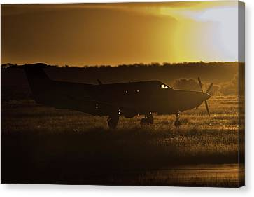 Late Afternoon Mercy  Canvas Print by Paul Job