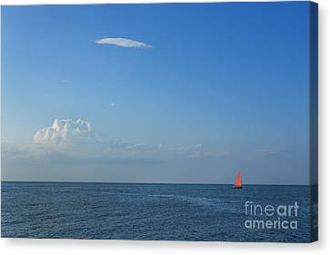Cape Cod Bay Canvas Print - Late Afternoon Sail by Diane Diederich