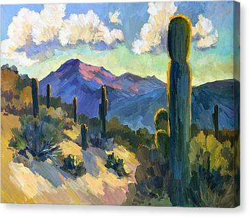 Impressionism Canvas Print - Late Afternoon Tucson by Diane McClary