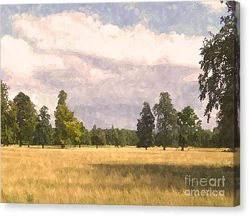 Constable Canvas Print - Late Afternoon Wheatfield  by Pixel  Chimp