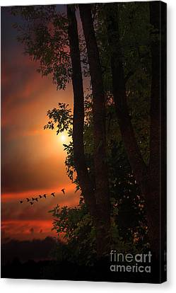 Late August Sunset Canvas Print by Tom York Images